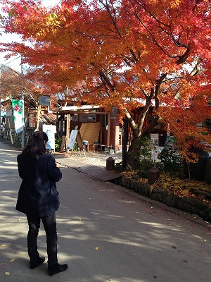 秋月の紅葉